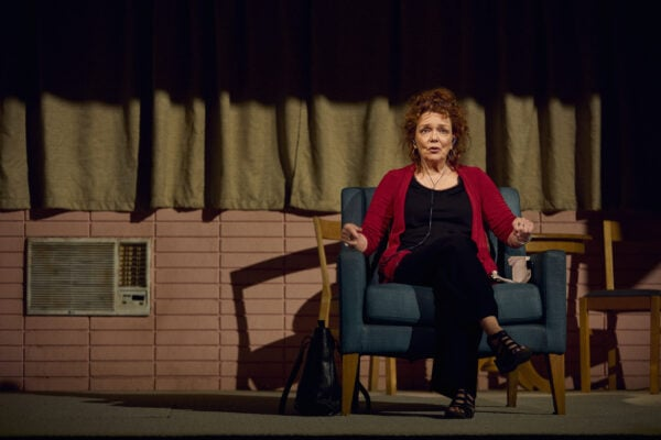 Review: Dana H at the Lyceum Theatre